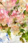How the roses startet out '14 - 65 x 50 - Marjan Pennings