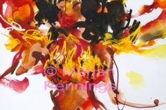 1_IMGP6266-Gallery-XXX