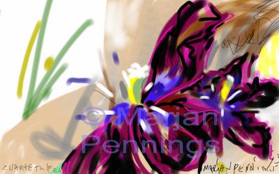 Black-Tulip-15-Print-Marjan-Pennings