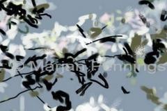 Full-moon-tonight-I-small-the-Jasminflowers-detail-15-Print-Marjan-Pennings