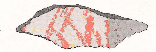 Souvenir uit de prehistorie - de wetenschap weet er weer niets van